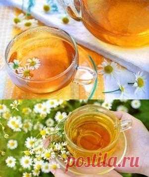 Как приготовить чай с ромашкой правильно