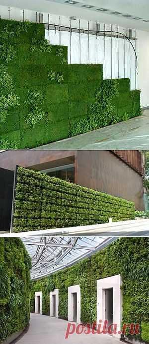 Нетканые материалы для ландшафтного дизайна. Вертикальное озеленение.