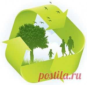Экологические программы и инциативы - ГЕНИЙ БИОРАЗНООБРАЗИЯ