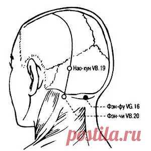 «Точка Конфуция»: особое место силы на теле человека.  Китайцы считают, что «жизнью человека управляют три точки: хозяин пищеварения — «точка Чингисхана», повелитель времени — точка «Цзу-сань-ли» и управляющий разумом — «точка Конфуция». Поэтому влияние на последнюю, кроме нейтрализации последствий острого или хронического стресса, еще и стимулирует развитие здорового мозга.