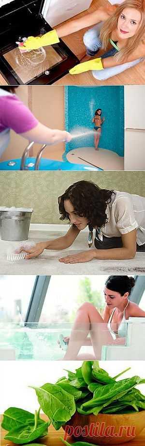 Домохозяйки | Кулинария, воспитание детей, психология отношений, рукоделие, домашние животные, комнатные растения, здоровье и красота