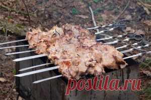 Рецепты шашлыка из мяса, рыбы и даже картошки...