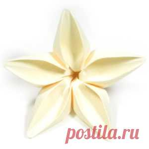 How to make an origami jasmine flower: page 1