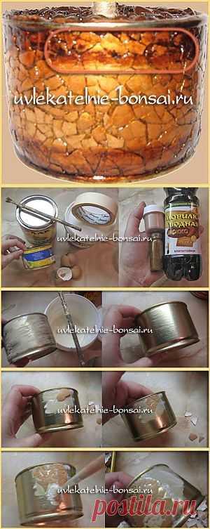 Превращаем консервную банку в кашпо под кофейное дерево | Увлекательные Бонсай