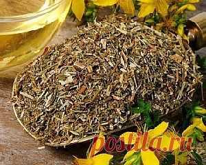 Целебные травы (зверобой) для очищения печени.