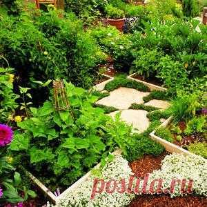 Элементы контейнерного сада — деревянные ящики, вазоны, глиняные кадки — все это уместно использовать и на огороде.