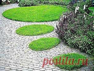 Если места для газона в саду недостаточно, можно обойтись зелеными вкраплениями в вымощенной камнем площадке.