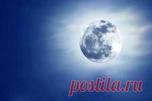 Лунный календарь садовода иогородника. 2-19 марта   Календарь   Дача   Аргументы и Факты