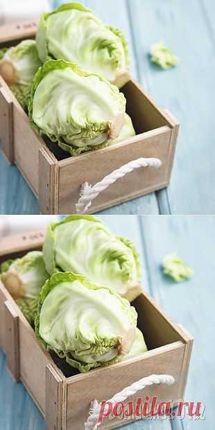 Лучшие рецепты с капустой | Осень | Рецепты Вкусно и Полезно