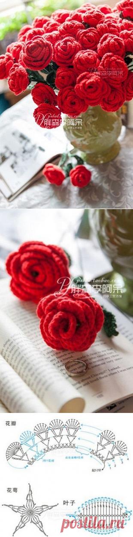 Вязаные крючком розы