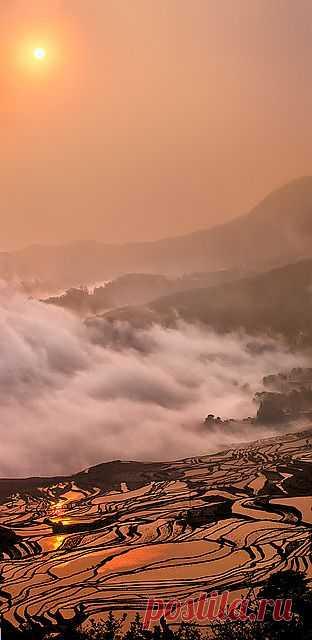 Восход солнца над рисовой террассой