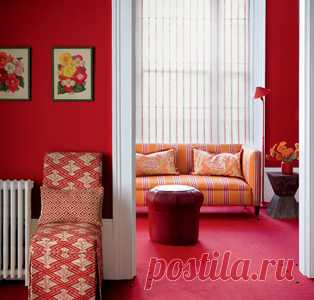 in red color - a drawing room