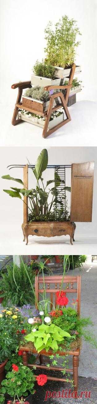Украшаем цветами и старой мебелью наш сад