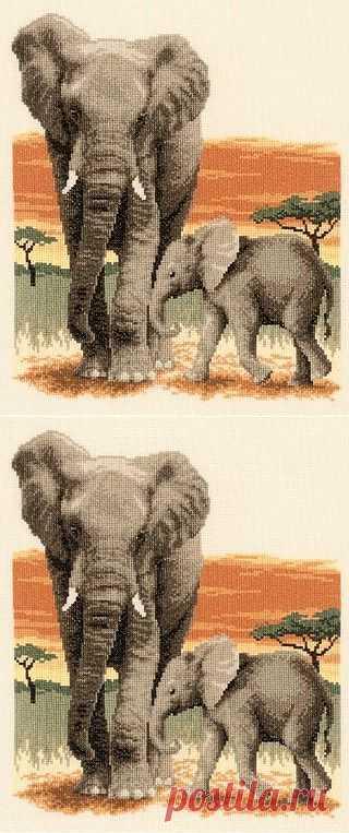 Набор для вышивания «PN-0021576 Путешествие слонов» — купить в интернет-магазине «Мир Вышивки» | Заказать товары для рукоделия