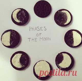 Как оригинально объяснить ребенку, что такое фазы Луны с печеньем «Орео»