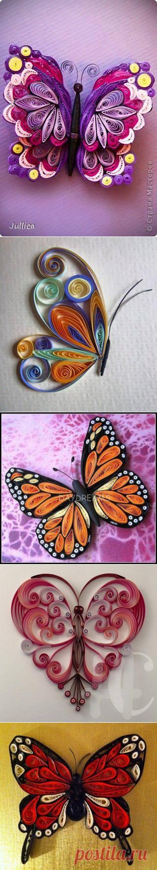 Бабочки в технике квиллинг — Сделай сам, идеи для творчества - DIY Ideas