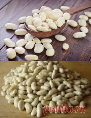 Белая фасоль при сахарном диабете 1 и 2 типа + рецепты приготовления
