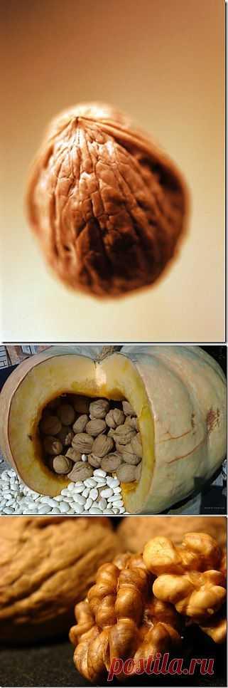 (+1) тема - Волшебный грецкий орех   ВСЕГДА В ФОРМЕ!