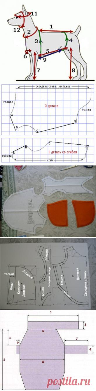 выкройка халата для йорка соответствующий