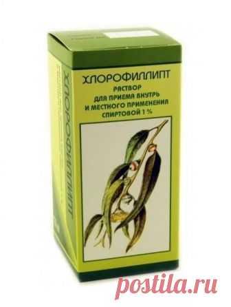 Раствор «Хлорофиллипта» — от ангины до грибка стопы!