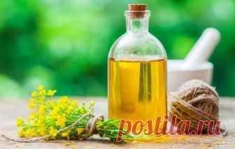 Рапсовое масло - вред и польза, применение для здоровья, в косметике