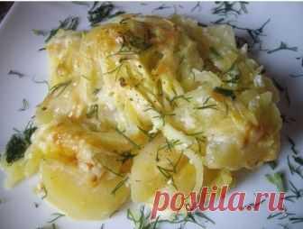 Невероятно вкусная картошка в сметане к семейному ужину    Очень вкусно!          Ингредиенты: картофельлуксметанасырспециилюбая зелень Приготовление:  Сметану смешиваем с водой поровну, добавляем любимые специи. Перемешиваем. Нарезаем лук кольцами. Карто…