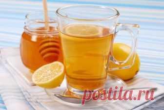 Отлично снижают аппетит!2. Вода с лимоном и медом   В деле снижения аппетита отлично зарекомендовал себя простой стакан воды с несколькими дольками лимона и чайной ложкой меда. Кроме того, этот напиток прекрасно тонизирует и очищает желудочно-кишечный тракт.