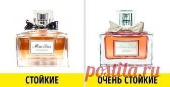 14 astucias, que ayudarán encontrar ideal parfyum