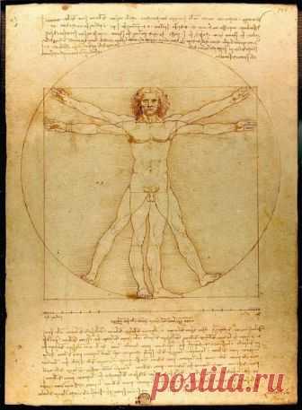 Леонардо да Винчи - гений, родившийся слишком рано? | МИР НАУКИ | Яндекс Дзен