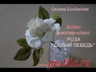 "Видео мастер-класс Роза ""Белый лебедь"""