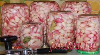 Маринованный чеснок холодным способом! Вкуснятина! Приготовленный таким образом чеснок сохраняет большинство полезных свойств!