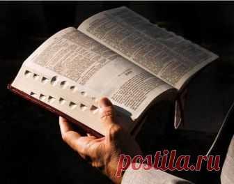 Что запрещено делать, согласно Библии Мы живем вроде бы в цивилизованном обществе. И даже более-менее соблюдаем 10 заповедей: не убиваем, не крадем, не… ну и так далее. Но общество отчего-то все так же непримиримо в отношении множества ве...