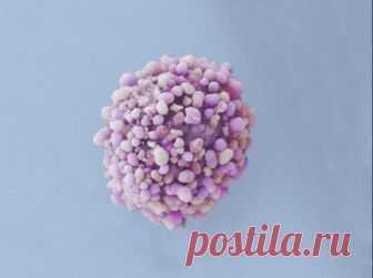 Как кровь помогает распространяться раковым метастазам