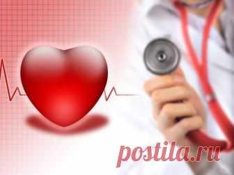 Пульс человека: каким должно быть нормальное и допустимое сердцебиение, как измеряется частота ударов Оптимальный и нездоровый пульс человека и его норма в минуту. Как правильно измеряется и от чего зависит частота ударов сердца в разных состояниях. Значение допустимых показателей.