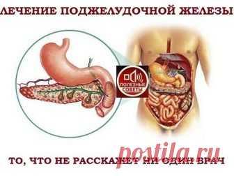 ПОЛЕЗНОСТИ :  Сохраните, чтобы не потерять.  СОВЕТ 1 : ЛЕЧЕНИЕ ПОДЖЕЛУДОЧНОЙ ЖЕЛЕЗЫ НАРОДНЫМИ МЕТОДАМИ   То, чего не расскажет ни один врач! Поджелудочная железа — один из важных внутренних органов  человеческого тела, который отвечает за наше пищеварение. Сбой в работе поджелудочной чреват осложнениями и целым рядом заболеваний, таких как панкреатит или сахарный диабет. К счастью, есть прекрасные народные средства, которые помогают лечить этот орган не хуже лекарств. Если...