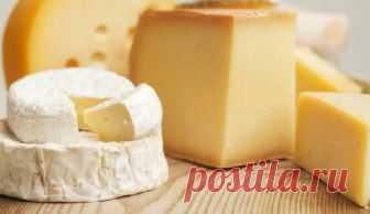 Сыр, который полезно есть на ночь - Медицина 2.0