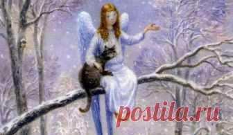 Очень трогательная сказка про кота и ангела… Блог о самом интересном, позитивном, добром и конечно о животных!