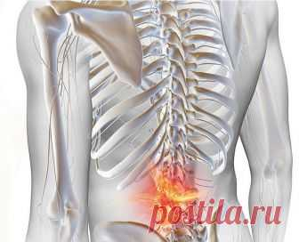 Полезные упражнения при остеохондрозе Целью упражнений является поддержание подвижности в каждой паре позвонков. Перед тем как выполнять эти упражнения необходимо устранить тугоподвижность между телами позвонков (если таковая имеется) проведя курс мануальной терапии.