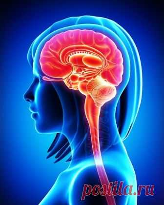 8 тихих признаков рака мозга, которые нужно знать   Здоровье! Энергия! Жизнь!   Яндекс Дзен