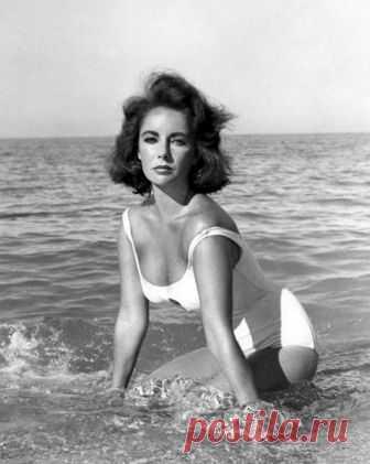 Топ-10 кино-купальников 1. Элизабет Тэйлор в фильме «Внезапно, прошлым летом», 1959 год.Да, сюжет фильма был, пожалуй, слишком мелодраматичным. Но белый купальник, который был на Элизабет Тэйлор в этой картине был действительно и...