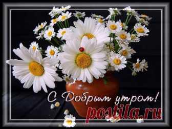 С Добрым утром! Счастья Вам! Как прекрасен утренний рассвет, он нам дарит радость, свет… Пусть будет самым добрым утро для тебя, пусть сбудется твоя заветная мечта, Пусть он будет продолжением хорошего дня, желаю тебе здоровья, счастья, удачи, тепла.  *  *  *  *  *  Скопируйте ссылку и Отправьте бесплатно родным, подругам и друзьям! Музыкальная открытка:...