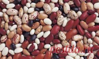 Фасоль при диабете: лечебные свойства. Белая, красная, черная и стручковая фасоль при диабете 2 типа. Можно ли есть створки фасоли при сахарном диабете?