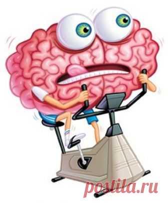 Развитие памяти Многие из нас считают, что их память недостаточно хороша, но как правило они заблуждаются. Практически все обладают хорошей памятью, но наша память работает выбирает только самое интересное