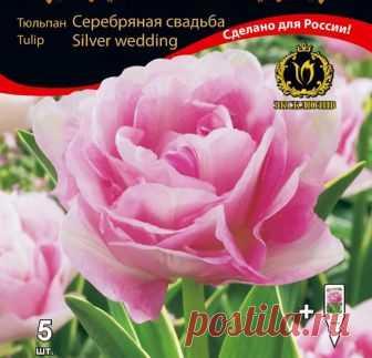 Тюльпан Триумфатор, смесь Потрясающие махровые тюльпаны сорта