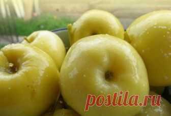 Моченые яблоки Антоновка – 6 рецептов приготовления в домашних условиях