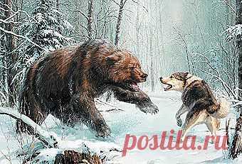 Семнадцать минут изжизни охотника - Охота - Охотники.ру
