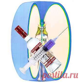 Влияние алкоголя и наркотиков на организм и сущность человека   Здоровье   Просветление Знанием