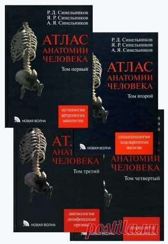 атлас по анатомии синельников pdf