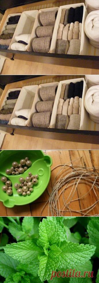 Как складывать и хранить носки Как складывать и хранить носки У мужчин (да, и у женщин тоже,... Читай дальше на сайте. Жми подробнее ➡