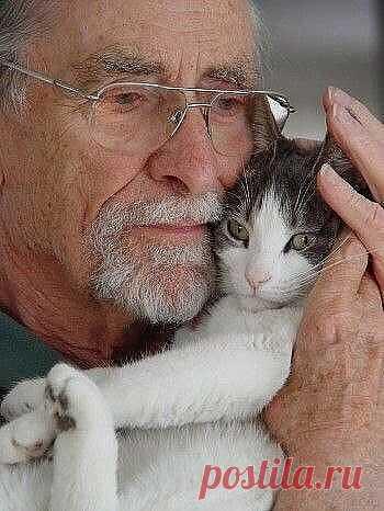 Потому что коту не важно, кто ты, как ты выглядишь и сколько тебе лет